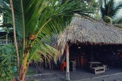 Hostel Canegue, el zonte (4)