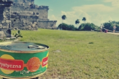 Konserwa w ruinach w Tulum