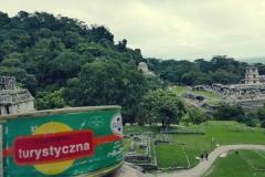 Konserwa w ruinach w Palenque