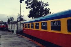 Macho Tren