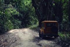 W drodze na szczyt