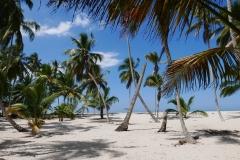 Plaże Palomino