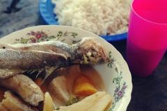 RonDon - danie z ryby i gotowanych warzyw przygotowane przez naszego kapitana