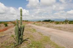 Pustynia Tatacoa (2)
