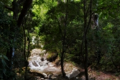 Górska rzeka nieopodal Minki