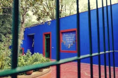 Muzeum Fridy (6)