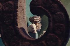Muzeum antropologiczne (5)
